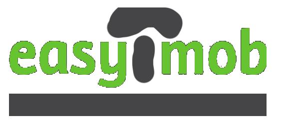 easymob-consultoria-imobiliaria-gr